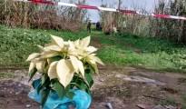 Bimbo trovato morto a Ragusa, sequestrata l'auto del cacciatore
