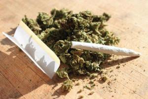 Cannabis, trampolino di lancio per alcol e nicotina? A dirlo due studi scientifici